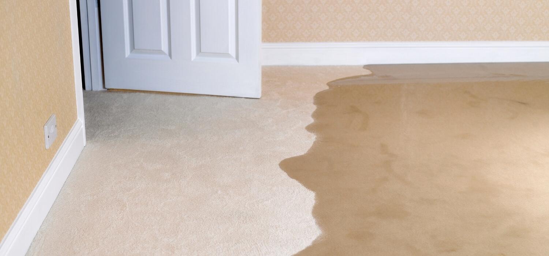 Water Flooding in Bedroom Carpet